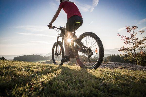 Tour de Alm - Biker Sonne